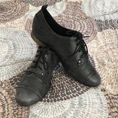 11 Best NOT Just Heels. #GZSS17 images | Giuseppe zanotti
