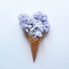 periwinkle flowers in sugar cone