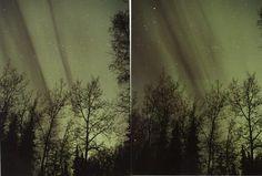 Black Aurora - Alaska