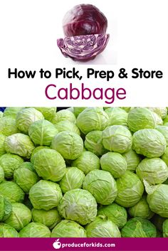 How to Pick, Prep & Store Cabbage + nutrition information, recipes, fun facts and more!