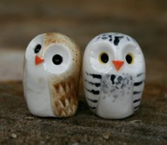 Snowy & Tawny owl friends Harry Potter Inspired by calicoowls
