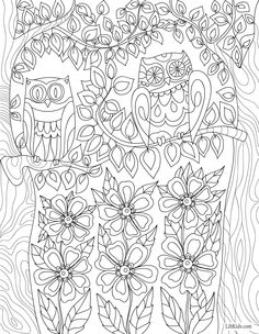 Free Owls Flowers Adult Coloring Book Image From LiltKids See More