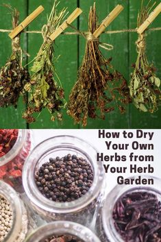 How to start an indoor herb garden and how to dry herbs. List of herbs to grow indoors for cooking and herbs for medicinal purposes. Start a small herb garden on your kitchen window with these tips #windowgarden #kitchengarden #herbgarden Health And Wellness Quotes, Health And Wellbeing, Health And Nutrition, Health Fitness, Health Tips, Balcony Herb Gardens, Small Herb Gardens, Best Herbs To Grow, Growing Herbs Indoors