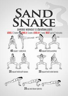 Sand Snake Workout