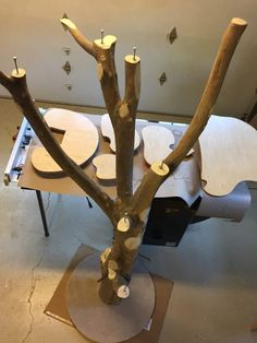 Then she counter-sank some lag bolts to attach the shelves to the top of each branch.