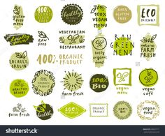 Vector Set Of Healthy Organic Food Labels For Vegetarian Restaurant, Vegan Cafe Menu - 338567711 : Shutterstock
