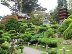 San Francisco Japanese Tea Garden.....Golden Gate Park San Francisco