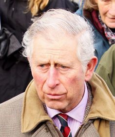 from Malaki prince charles gay scandal