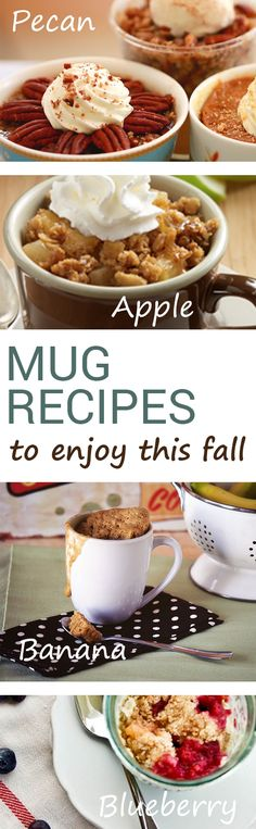 Fall is the perfect season for raking leaves, carving pumpkins, shopping for sweaters and enjoyingseasonal desserts. Since this time of the year can get pretty busy, you may not have the time to bake your favorite holiday sweets. Luckily there are 5 mug...