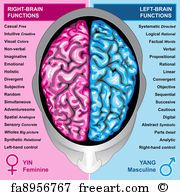 The Brain Diagram And Functions . The Brain Diagram And Functions Brain Anatomy And Function Interactive Brain Anatomy Parts And Left Brain Right Brain, Brain Gym, Brain Science, Human Brain Diagram, Human Brain Parts, Brain Anatomy And Function, Brain Lobes And Functions, Function Diagram, Brain Mapping