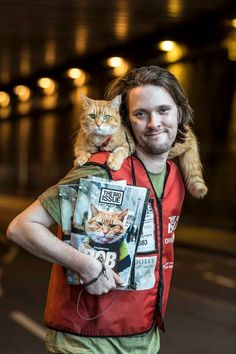 Bob Cats Bestselling author and ex-Big Issue seller James Bowen on the Christmas that changed his life – with the help of Street Cat Bob Animal Gato, Amor Animal, Mundo Animal, Crazy Cat Lady, Crazy Cats, I Love Cats, Cool Cats, Pete The Cat, Bobcat Pictures