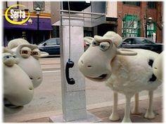 serta sheep - Google Search