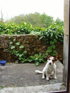 Koen in France, waiting for dinner