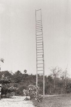 jesuisperdu:paty de la torre