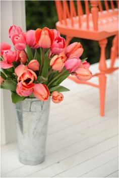 Love these tulips...and these colors, with that bench...beautiful!