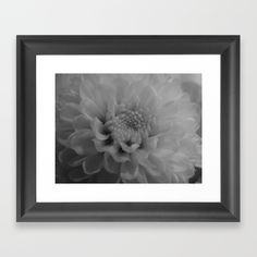 Flower in Black and White - $35