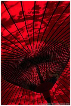 Traditional Japanese Umbrella - ©Damien Douxchamps www.flickr.com/photos/takahara/7152039555/in/photostream/