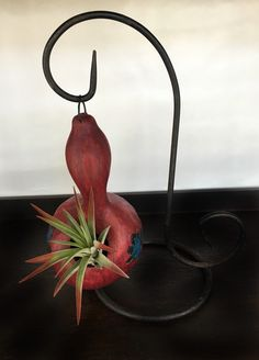 gourd planters used for air plants