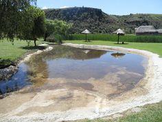 DRAKENSBERG DROOM! 6 tot 11 November 2016 Slegs 30 sitplekke beskikbaar Bly oor by ATKV oord Drakensville, besoek onder andere die Drakensberg, Falcon Ridge Birds of Prey Sentrum, Eskom kragstasie, Royal Zulu Reservaat en woon 'n uitvoering van die Drakensberg Seunskoor by. Alle verblyf, etes en busvervoer ingesluit, sowel as toegangsgelde. Koste: R5 750-00 per person wat deel of R7 000 vir enkel kamer. Kontak ons gerus vir meer besonderhede of navrae Gerrie  – 079 381 9643 / 031 7018037