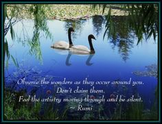 Top 25 Most Inspiring Rumi Quotes: click image to discover mystical Rumi quotes on Love, Transformation and Wisdom.