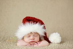 newborn christmas picture