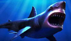 http://ruangtanya.com/ikan-terbesar-di-dunia/
