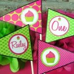 Hot Pink and Lime Green Cupcake Birthday Party Centerpiece Flags