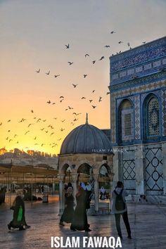 Medina Mosque, Palestine Art, Dome Of The Rock, Palestinian Embroidery, Madina, Holy Land, Modern Buildings, Jerusalem, Taj Mahal
