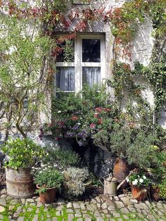 window by suzysvintageattic on Flickr