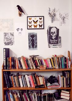 at audrey cantwell's of ovate, & jason lee's drawing above her books (metal portrait)