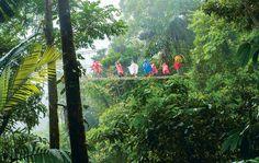 Costa Rica: Das bedrohte Paradies