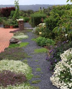 The thyme walk, influenced by that at Highgrove.