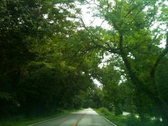 General Hutchison Parkway in Longwood, FL.