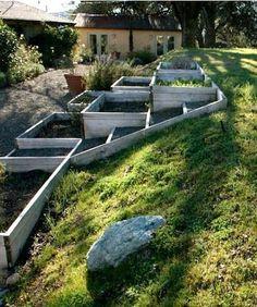 Raised Vegetable Garden Beds Can Be A Great Gardening Option Hillside Garden, Hillside Landscaping, Terrace Garden, Garden Paths, Landscaping Ideas, Landscaping Retaining Walls, Potager Garden, Sloped Yard, Sloped Backyard