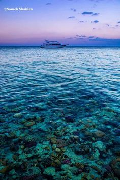 Sharm Elsheikh , Egypt
