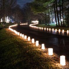 Symple Stuff Flame Resistant 100 Light Luminary and Pathway Lights Home Wedding, Rustic Wedding, Dream Wedding, Field Wedding, Garden Wedding, Western Wedding Ideas, Lake Wedding Ideas, Wedding Walkway, Magical Wedding