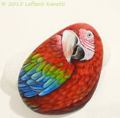 Red Parrot Portrait Hand Painted on Stone ! Is Painted with high Quality Acrylic Paints and Finished with Glossy Varnish Protection.