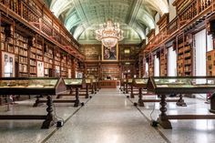 The Braidense National Library of Milan Maria Teresa, Beautiful Library, Little Gardens, Beautiful Buildings, 17th Century, Glass Art, Photos, Around The Worlds, Instagram