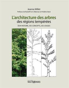 L'architecture des arbres des régions tempérées. Son histoire, ses concepts, ses usages - Jeanne Millet