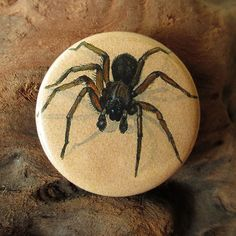 Six Little Spiders: Magnet Pack  1.25 button rounds