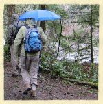 hiking with an umbrella - pros and cons... Never would have considered it, but he has some great points!