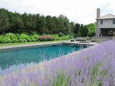 Garden by Hollander