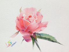 Roses ... Artist - watercolorist La Fe. Discussion on LiveInternet - Russian Service Online Diaries