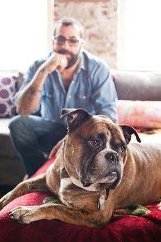 HGTV's Antonio Ballatore & his dog Chewie #petlove>>> love this dog!
