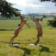 Boxing Hares by Theodore Gillick