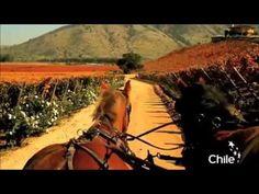 Cueca: Chile es una postal - YouTube