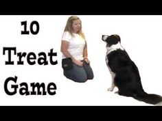 10 Treat Game - Shape Fest 2012 - Clicker Dog Training #dogtraining
