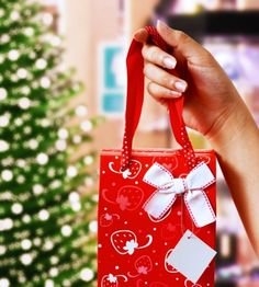 HOLIDAY SHOPPING GUIDE FOR THE SHOPPING IMPAIRED: What does this mother really want for Christmas? A personal shopper. I'm starting to think the idea of Santa Claus and his toy-making elves came from a desperate mother like myself who doesn't enjoy shopping.