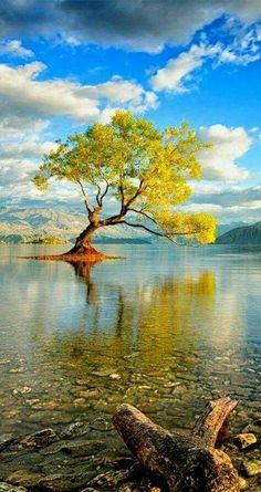 New Zealand, South Island Lake Wanaka