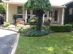 The Burlington Home Spaces, Plants, Home, Ad Home, Plant, Homes, Haus, Planets, Houses